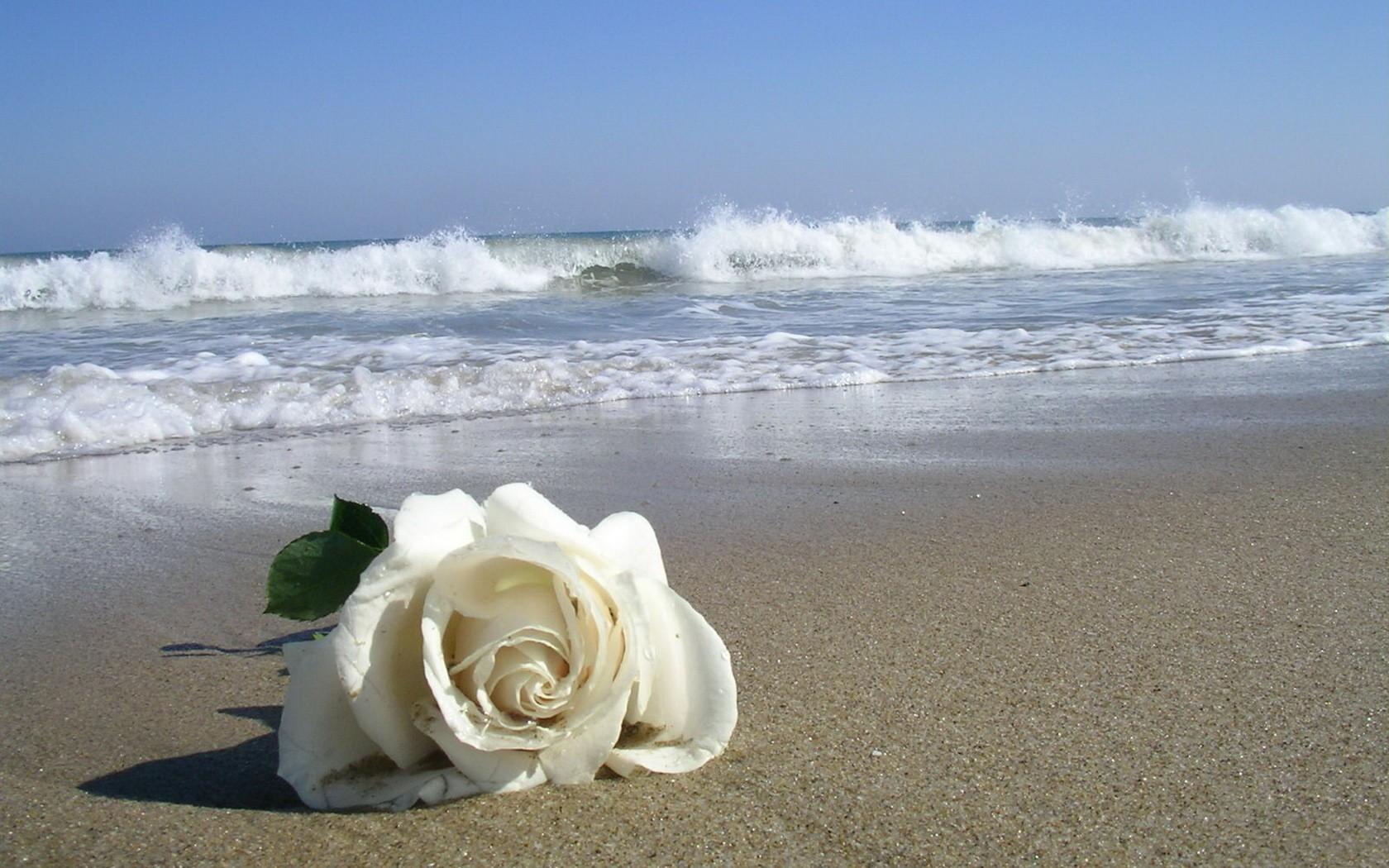 beach-sand_00428244