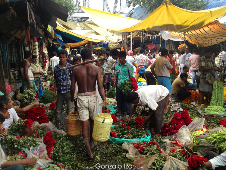 Agua-fresca-en-el-mercado-de-las-flores-de-Calcuta-chalo84