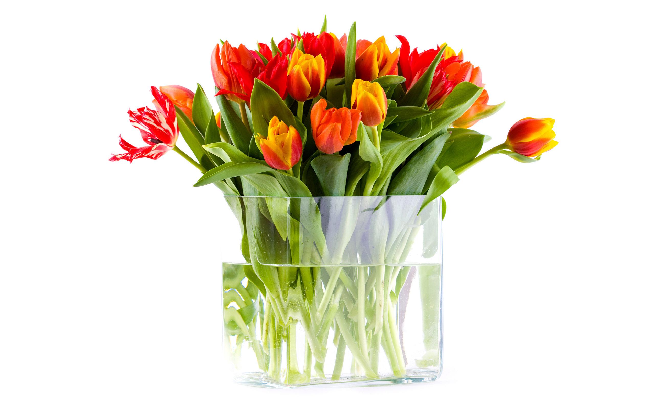 vaza-voda-cvety-buket-tyulpany