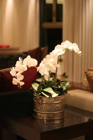 img-548593-plantas-e-flores-artificiais-sao-opcao-economica-e-de-bom-go20130924151380047836