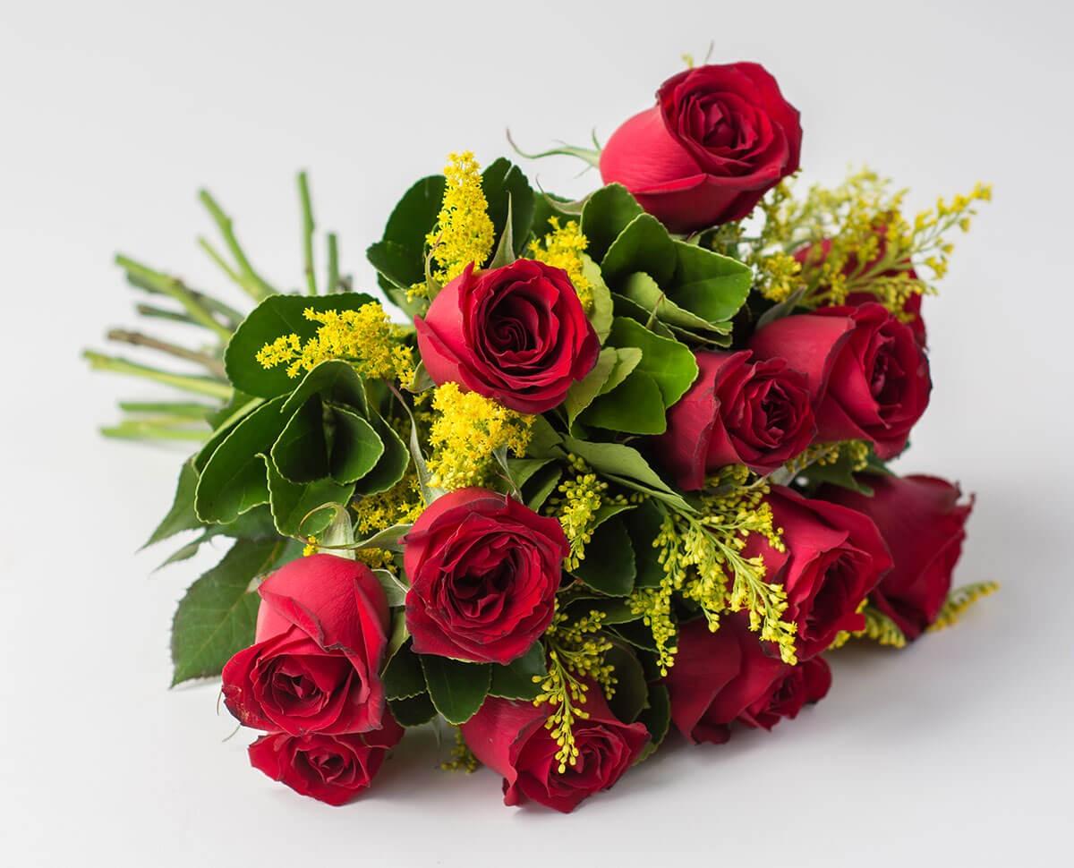 rosas-flores-e-flores