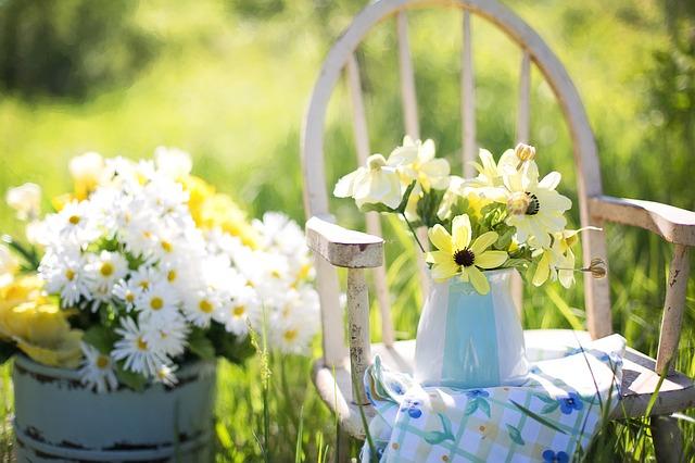 flores do campo