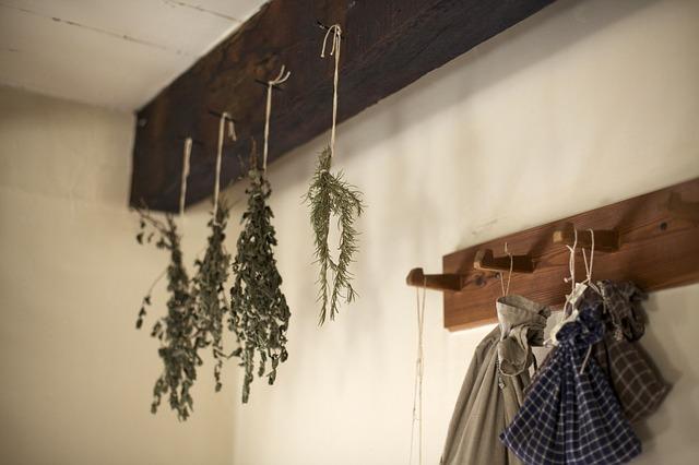 como cultivar temperos em casa