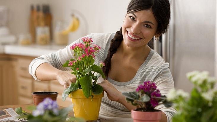 img-Cuidar das plantas